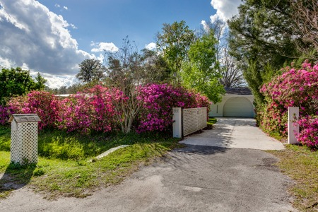 Pink Purple Flower Bushes Lining Long Driveway from Street Welcoming Entrance Landscaping Stok Fotoğraf - 118584349