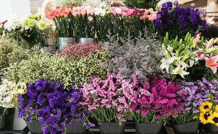 Variety of flowers in a flower shop Stock Photo
