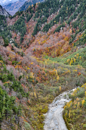 Magnificent autumn scenery of colorful foliage on rugged mountain cliffs from Kurobe Dam in Tateyama Kurobe Alpine Route, Toyama Japan 写真素材