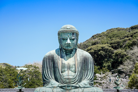 The great buddha, Daibutsu, of Kamakura with cherry blossom, Japan Imagens