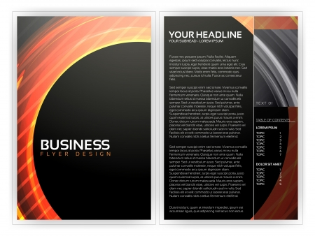 publisher: Business Flyer Template  Illustration
