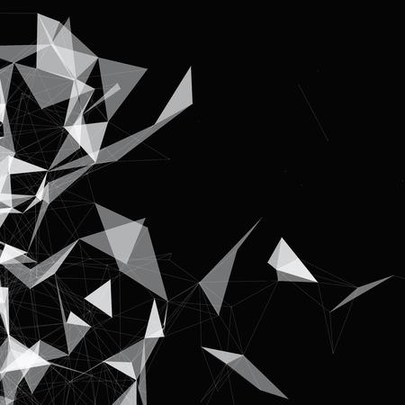 on white: Black and White Mesh Design