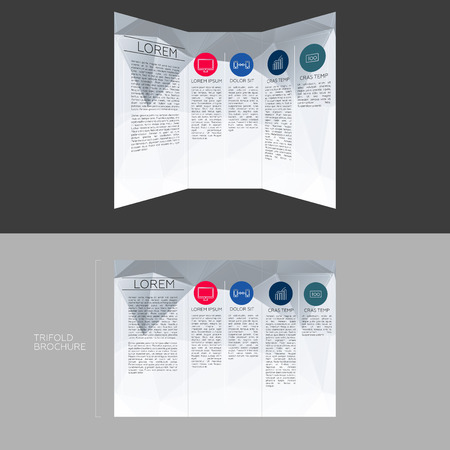 size: Trifold Brochure Template Design in DL Size