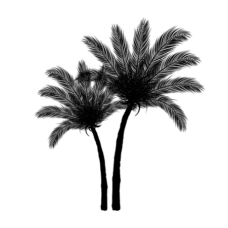 island: Palm Tree Silhouette Black on White Background | Vector Design