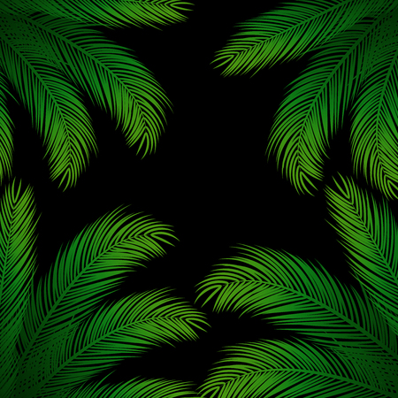 subtropical: Palm Leaves on Black Background | Holiday Vector Design
