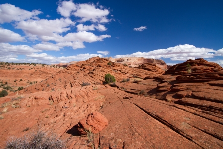 coyote buttes photo