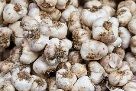 A garlic from the vegetables market