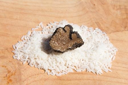 Black truffle, tuber melanosporum, sliced on cereal grain