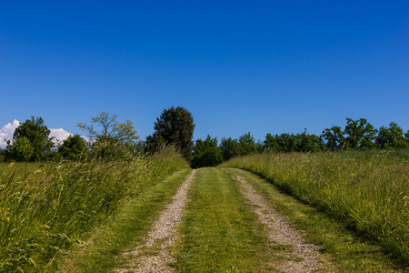 Beautiful road on countryside under the blue sky