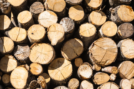 Image about a pile of firewood with some shadow Stock Photo