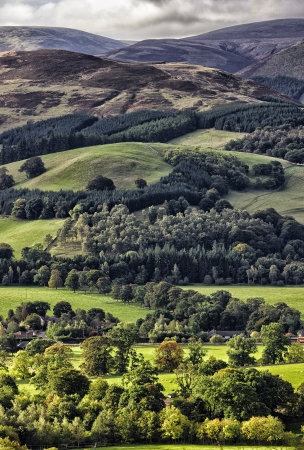 uplands: Hundleshope Heights, Ettrick Hills, Peebles, Scotland