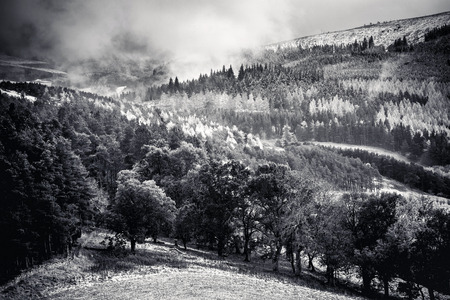 uplands: Snow Shower on the Southern Uplands of Scotland