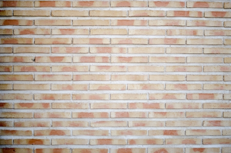 Brick wall background paste your text or vectors here 免版税图像
