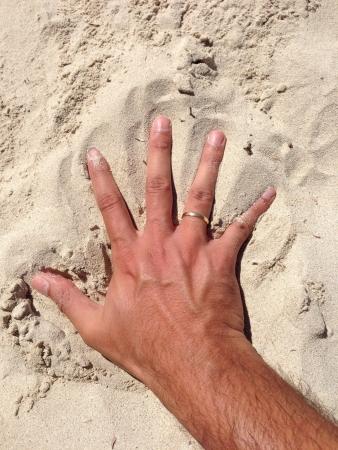 Hand on the beach sand 免版税图像