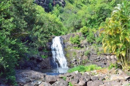 Small waterfall in a nice wood