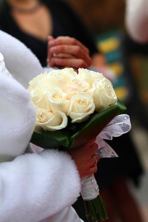Closeup wedding photos of groom and bride Stock Photo - 11060116