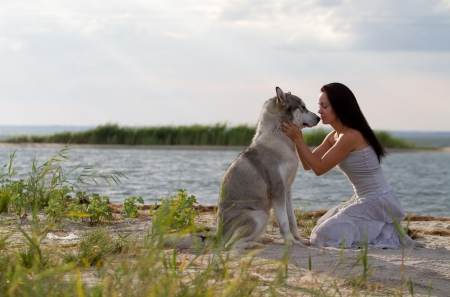 Young adult woman with her favorite pet - alaskan malamute dog on the beach in the evening photo