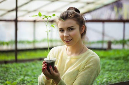 hothouse: Young brunette farmer girl taking care of green seedling plants in greenhouse with a happy smile. She is satisfied of how her vegetable sprouts grow under the sun in this hothouse.