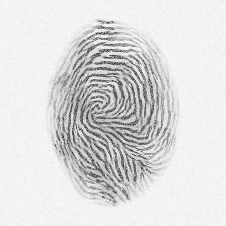fingermark: Black isolated fingerprint on white background