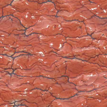 flesh: Seamless background material of the human brain or heart