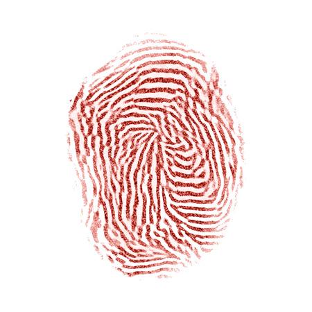 fingermark: Bloody red isolated fingerprint on white background