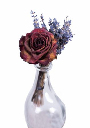 dode bladeren: Enkele gedroogde rode roos in lege vaas. Zelfgemaakte bloem boeket op witte geïsoleerde achtergrond. Stockfoto