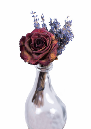 Single dried red rose in empty vase. Homemade flower bouquet on white isolated background. Stock Photo