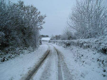 cornish: Snow in a cornish lane.