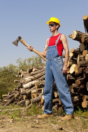 woodcutter: woodcutter cuts the tree in the forest Stock Photo