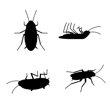 Vector Dead Cockroach Black Silhouette Set Bug Insect