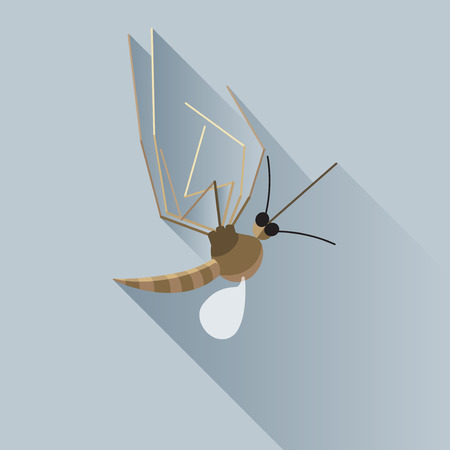 dead insect: Vector Long Shadow Dead Mosquito Bug Insect Illustration