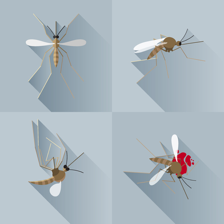Vector Long Shadow Mosquito Dead Silhouette Set