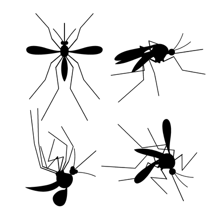 Vector Dead Mosquito Black Silhouette Set Swarm