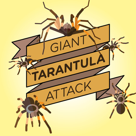 tarantula: vector flat silhouette tarantula ribbon badge banner Illustration
