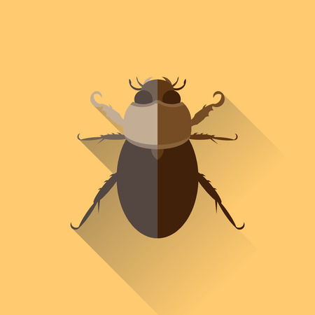 Vector Long Shadow Beetle Bug Incect Sand