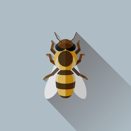 Vector Long Shadow Flat Honey Bee Bug Insect