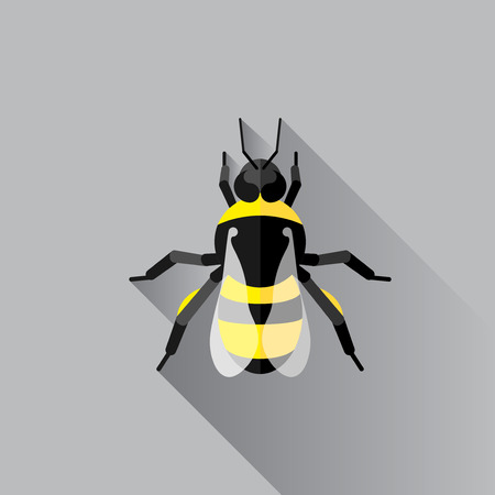 Vector Long Shadow Flat Bumble Bee Bug Insect