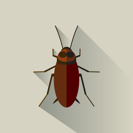 Vector Long Shadow Cockroach Bug Insect Disgusting
