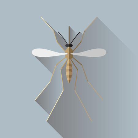 entomology: Vector Long Shadow Mosquito Bug Insect Pictogram Illustration