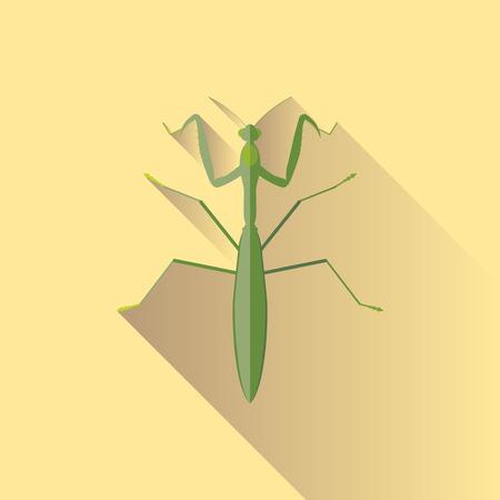 mantis: Vector Long Shadow Praying Mantis Bug Insect
