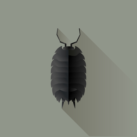 Vector Long Shadow Flat Woodlouse Bug Insect