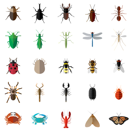 Vector flat long shadow 25 Bug Insect Set Vectores