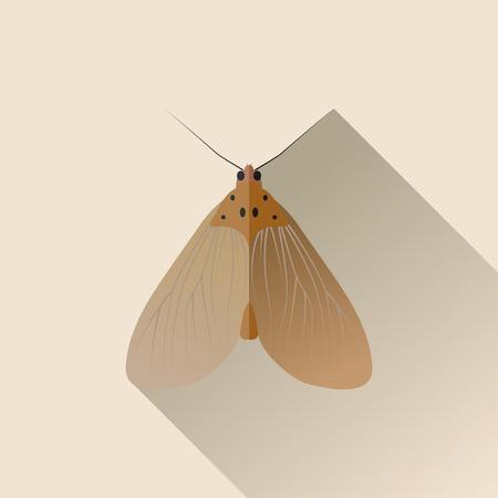 moth: Vector Long Shadow Flat Moth Bug Insect