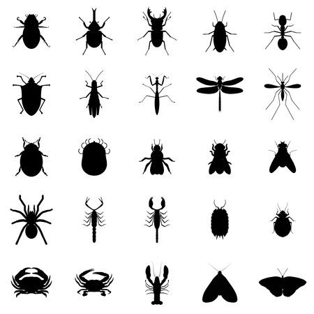 Vector 25 Black Silhouette Bug Insect Set Vettoriali