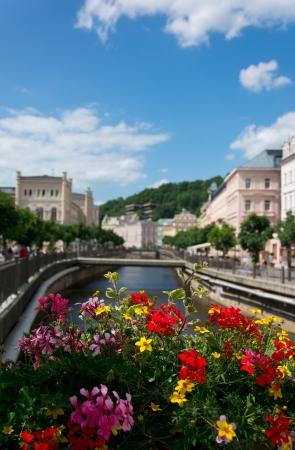 vary: Karlovy Vary, river over flowers