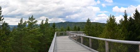 lipno: Treetop walk Lipno