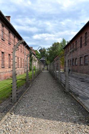 auschwitz: Auschwitz fence wall