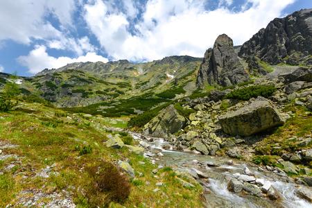 tatras tatry: Mlynick Valley, Vysoke Tatry Mlinicka valley, High Tatras - Slovakia Stock Photo