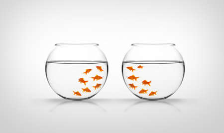exclude: Fishes in fishbowls Stock Photo