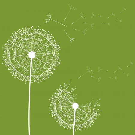 flying float: Dandelion flower desing design